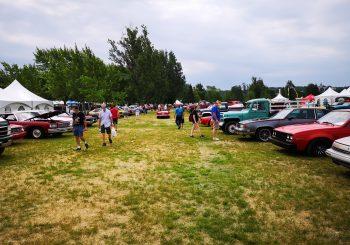 Plus de 3000 voitures anciennes dans un parc!